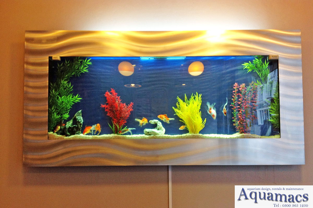 Aquariums By Aquamacs6