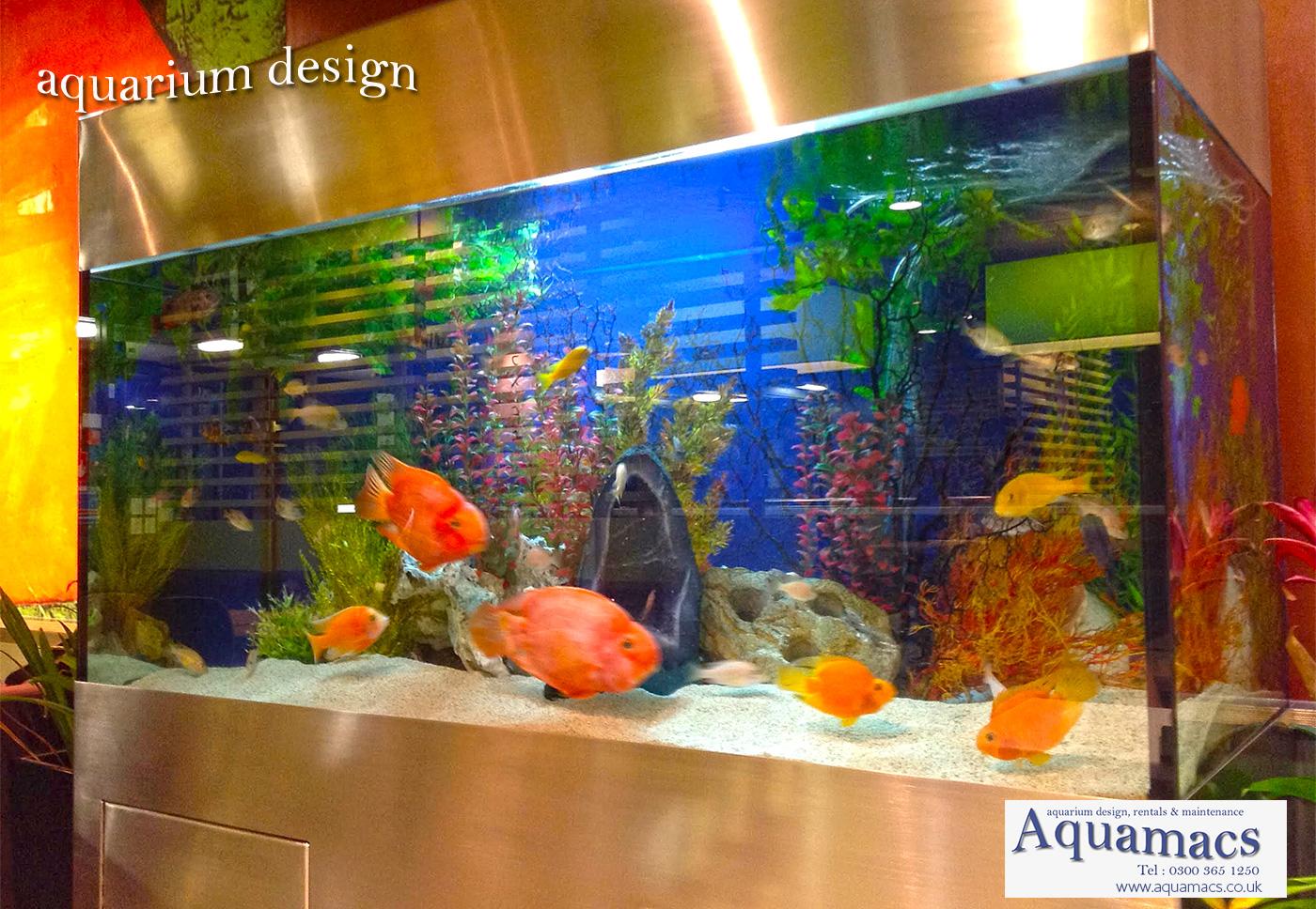 New Stainless Steel Aquarium Installation In London Aquamacs